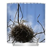 Blue Heron Rookery 7212 Shower Curtain