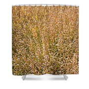Brown Grass Texture Shower Curtain