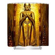 Buddha Inside Ananda Temple - Bagan - Myanmar Shower Curtain