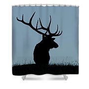 Bull Elk At First Light Shower Curtain