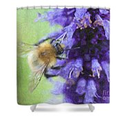 Bumblebee On Buddleja Shower Curtain