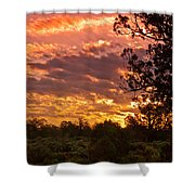 Canyon Dechelly Sunset In Copper And Gold Shower Curtain