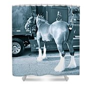 Clydesdale In Black And White Shower Curtain
