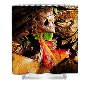 Colored Leaves Shower Curtain