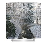 Creek Reflection Shower Curtain