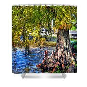 Cypress Tree Shower Curtain