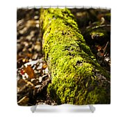 Dead Log With Moss Shower Curtain