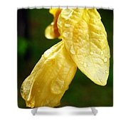 Drop On Yellow Flower Shower Curtain