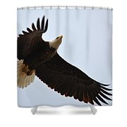 Flight Of Freedom Shower Curtain