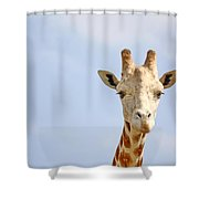 Friendly Giraffe Shower Curtain