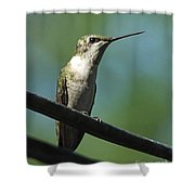 Girl On A Wire Shower Curtain
