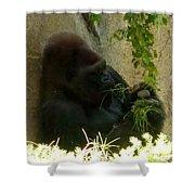Gorilla Snacking Shower Curtain