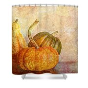 Gourd And Pumpkins II Shower Curtain