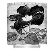 Hibiscus Art Shower Curtain