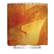 Impression Of A Yellow Rose  Shower Curtain