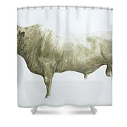 Islay Bull Shower Curtain by Lincoln Seligman
