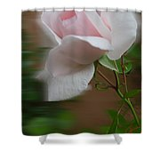 July  Rose Thought Shower Curtain