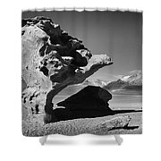 Landscape Of Bolivia Shower Curtain
