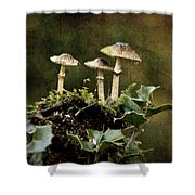 Little Mushrooms Shower Curtain