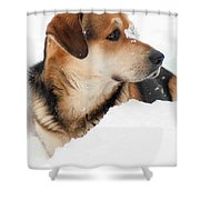 Look More Snow Shower Curtain