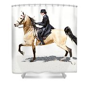 Lovely Gaited Buckskin  Shower Curtain
