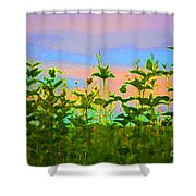 Meadow Magic Shower Curtain