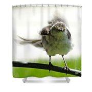 Mockingbird Dance Shower Curtain