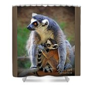 Mother And Baby Monkey Shower Curtain