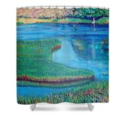 Myakka Sanctuary Shower Curtain