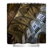 Narbonne Cathedral Shower Curtain