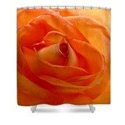 Orange Swirls Rose Flower Shower Curtain