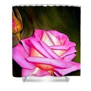 Painted Pink Rose Shower Curtain