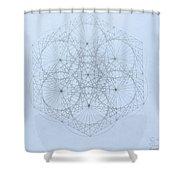 Quantum Snowflake Shower Curtain