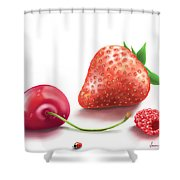 Red Fruits Shower Curtain