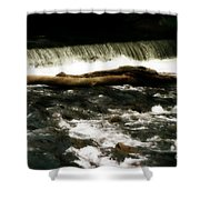 Little Log That Could Shower Curtain