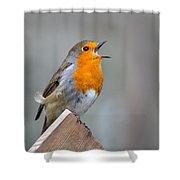 Robin Song Shower Curtain
