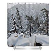San Jacinto Winter Wilderness Portrait Shower Curtain