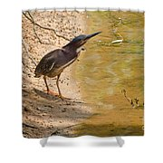 Shady Spot Shower Curtain