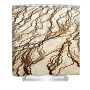 Spring Runoff Shower Curtain