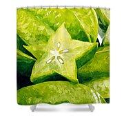 Star Fruit Carambola Shower Curtain