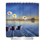 Summer Morning Magic Shower Curtain