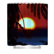 Sun Fusion Shower Curtain
