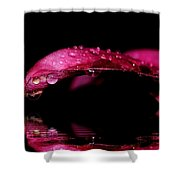 Tears Of Reflections Shower Curtain