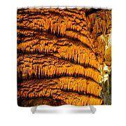 Temple Of The Sun Detail Shower Curtain