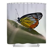 Thai Beauty On A Leaf Shower Curtain