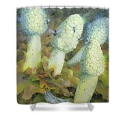 The Green Man With Fly Agaric Shower Curtain