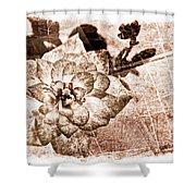 Thumbelina Rose - Miniature Rose - Digital Paint II Shower Curtain