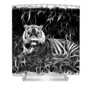 Tiger Spirit Shower Curtain