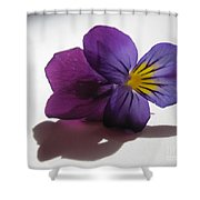Transparency 3 Shower Curtain
