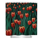 Tulip Festival Shower Curtain